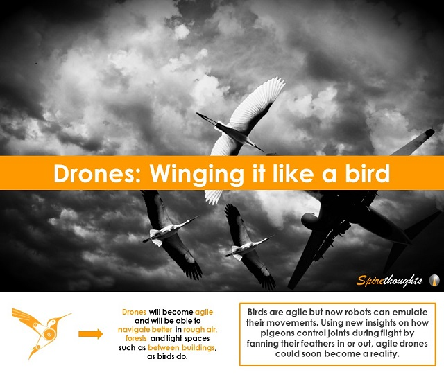Drones: Winging it like a bird